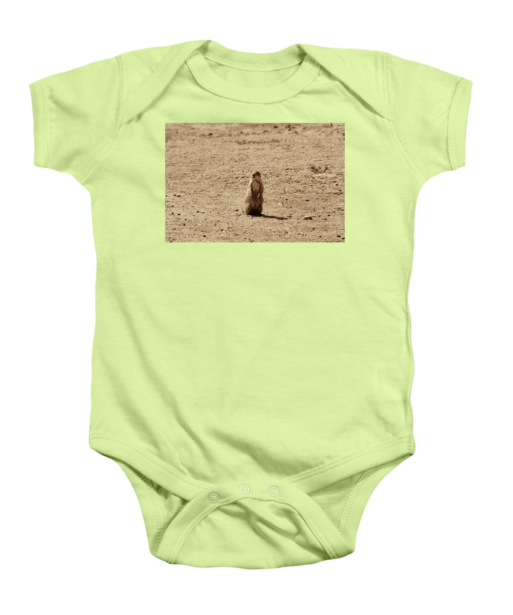 The Prairie Dog Baby Onesie featuring the photograph The Prairie Dog by Douglas Barnard