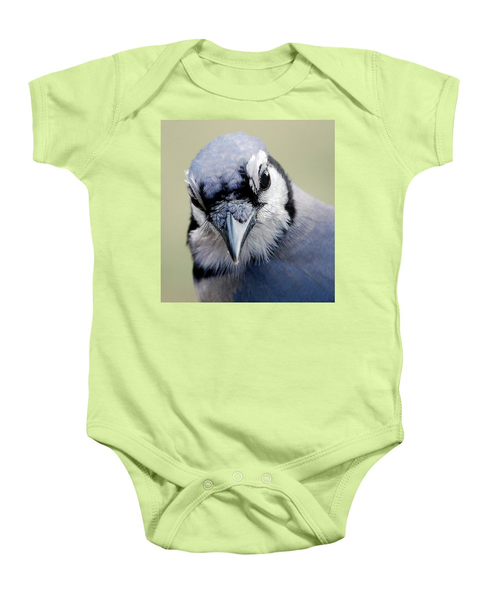 Bird Baby Onesie featuring the photograph Blue Jay by Skip Willits