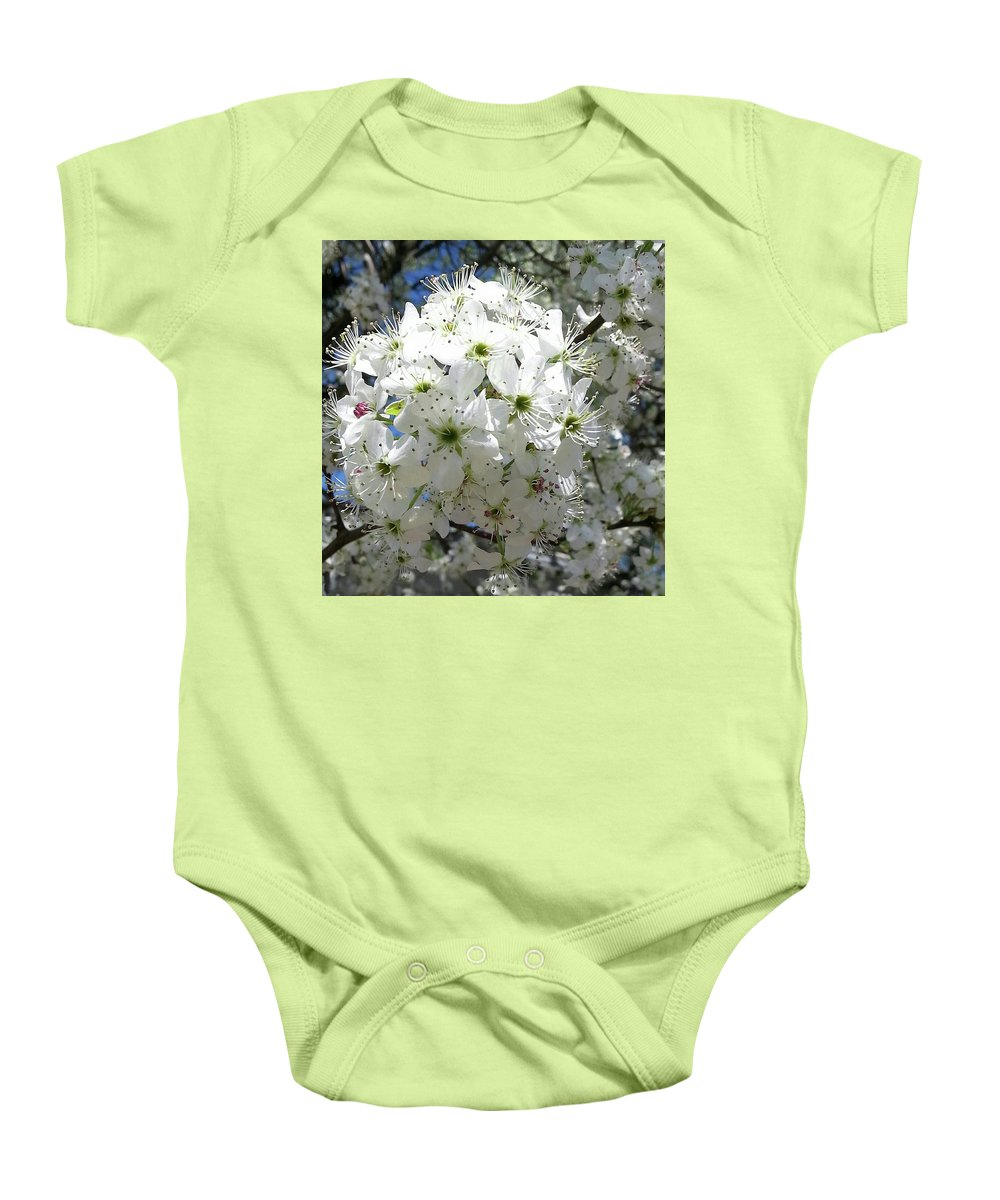 Flower Baby Onesie featuring the photograph Crabapple Blossom by Kathy R Thomas