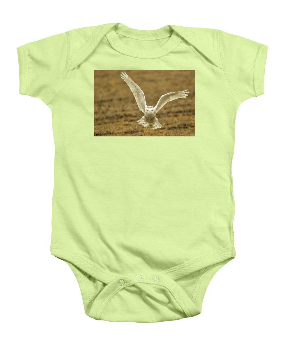 Snow Owl Baby Onesie featuring the photograph The Stare by Robert Smice