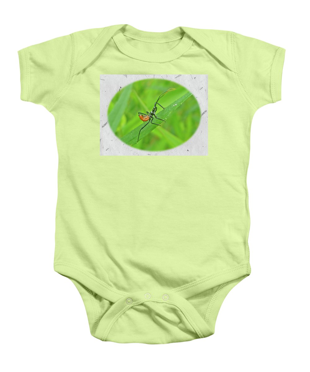 Assassin Baby Onesie featuring the photograph Assassin Bug Nymph - Reduviidae by Mother Nature