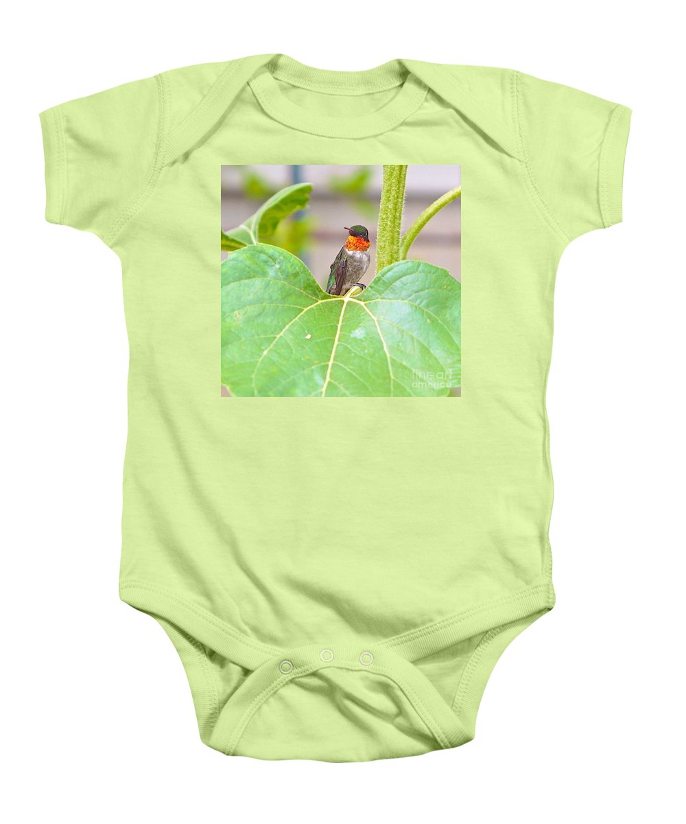 Humming Bird Baby Onesie featuring the photograph At Attention With Atitude by Robert Pearson