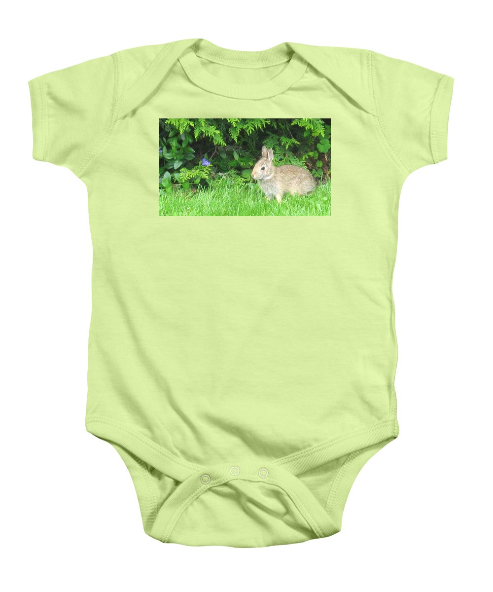 Rabbit Baby Onesie featuring the photograph Bunny In Repose by Ian MacDonald