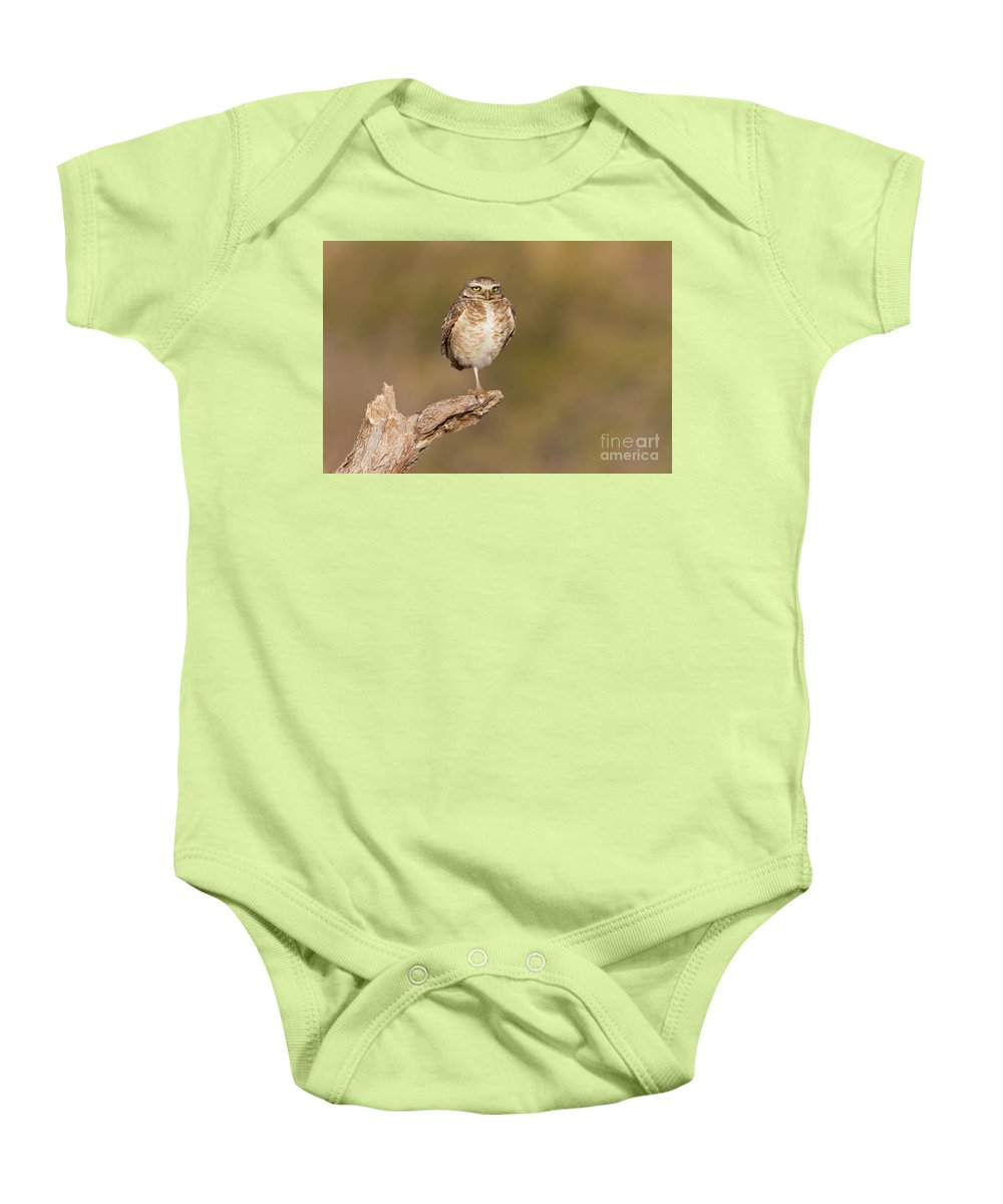 Owl Baby Onesie featuring the photograph Burrowing Owl Taking A Break by Bryan Keil