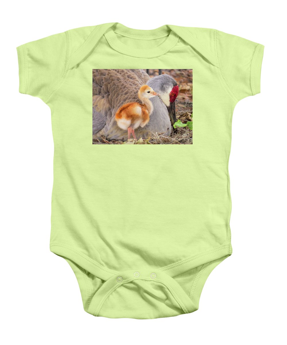 Chicks Baby Onesie featuring the photograph Close To Mother by Zina Stromberg