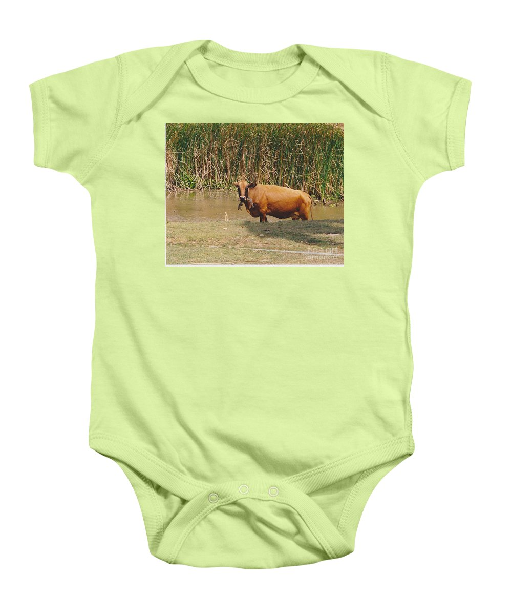 Animal Baby Onesie featuring the photograph Cow In The Field by Michelle Powell