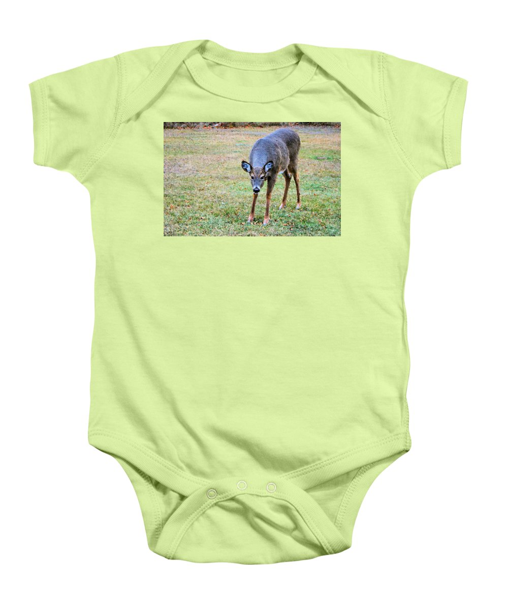 Doe Baby Onesie featuring the photograph Doe Stomp by Kristin Elmquist