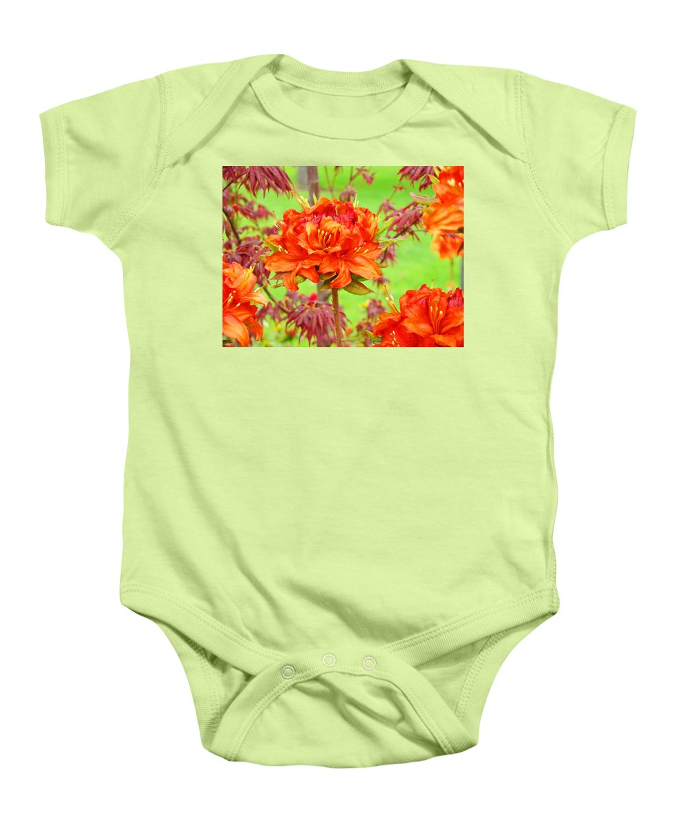 Rhodie Baby Onesie featuring the photograph Fine Art Floral Art Prints Canvas Orange Rhodies Baslee Troutman by Baslee Troutman
