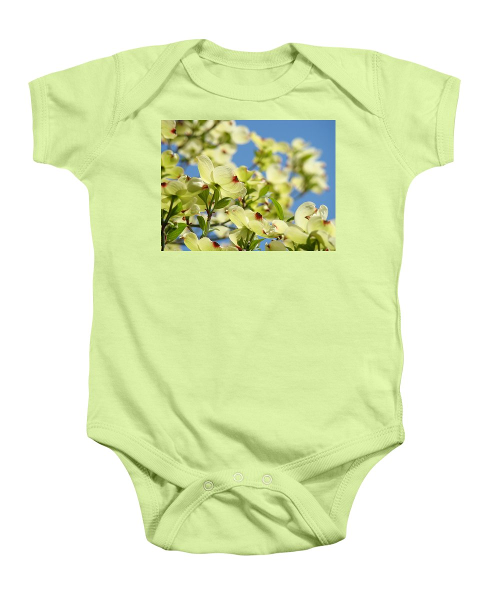 Dogwood Baby Onesie featuring the photograph Flowering Dogwood Tree Art Print White Dogwood Flowers Blue Sky Art by Baslee Troutman