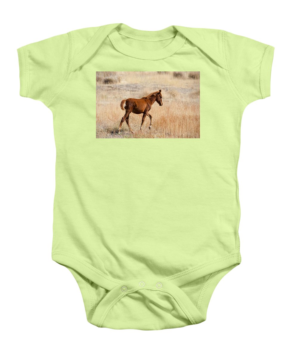 Mustang Baby Onesie featuring the photograph High Stepping by Mike Dawson