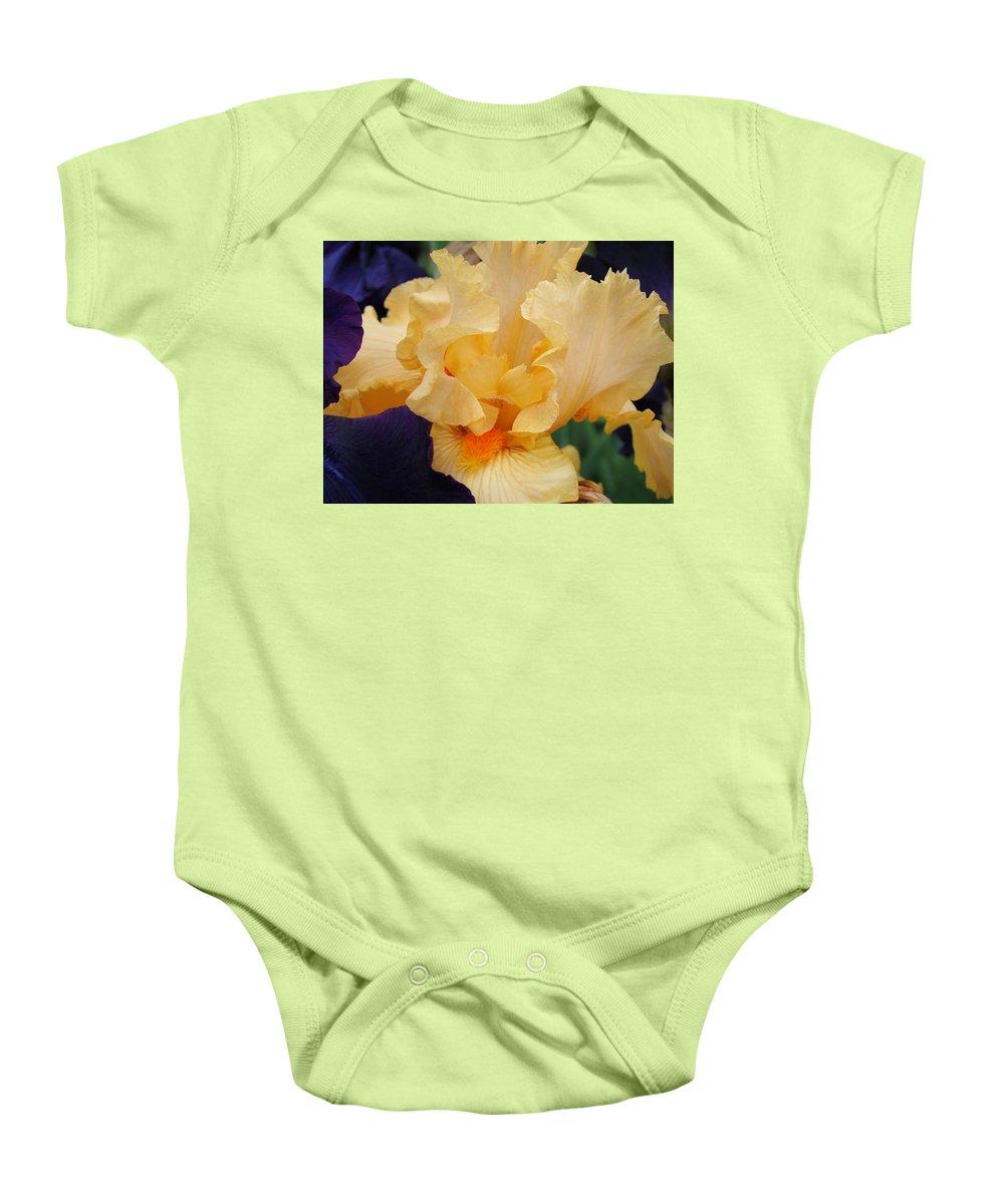 �irises Artwork� Baby Onesie featuring the photograph Irises Art Prints Peach Iris Flowers Artwork Floral Botanical Art Baslee Troutman by Baslee Troutman