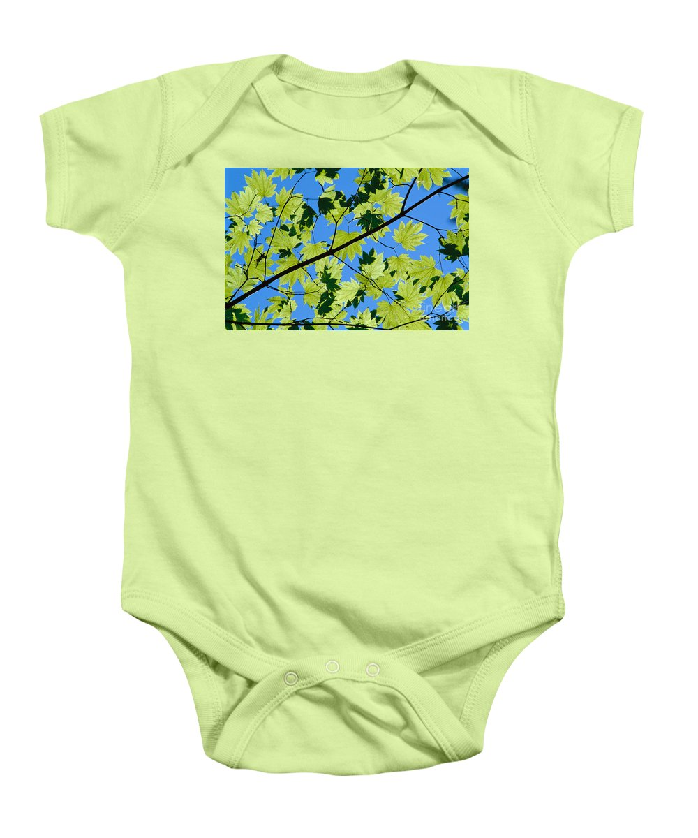 Afternoon Baby Onesie featuring the photograph Maple Leaves by Greg Vaughn - Printscapes