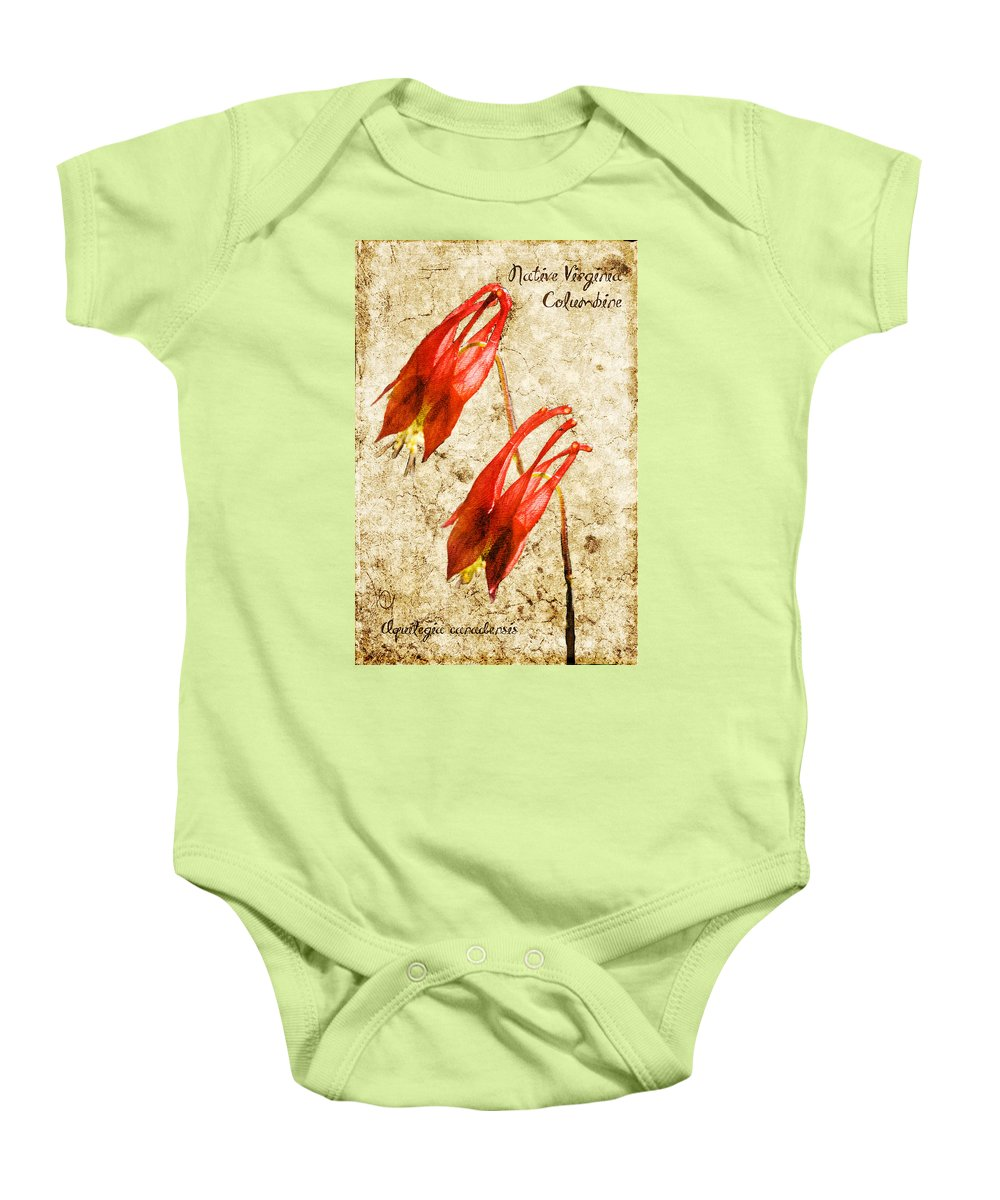 Columbine Baby Onesie featuring the digital art Native Virginia Columbine by Teresa Mucha