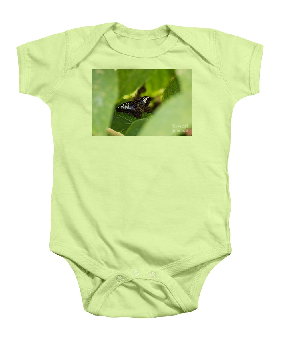 Butterfly Baby Onesie featuring the photograph Natures Window by Wesley Farnsworth