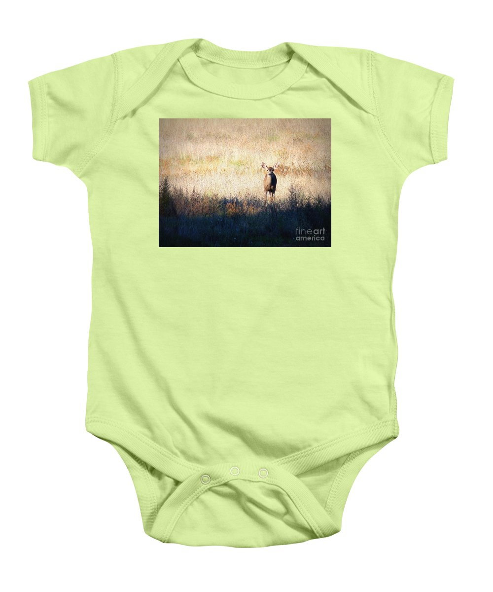 Wildlife Baby Onesie featuring the photograph One Cute Deer by Carol Groenen