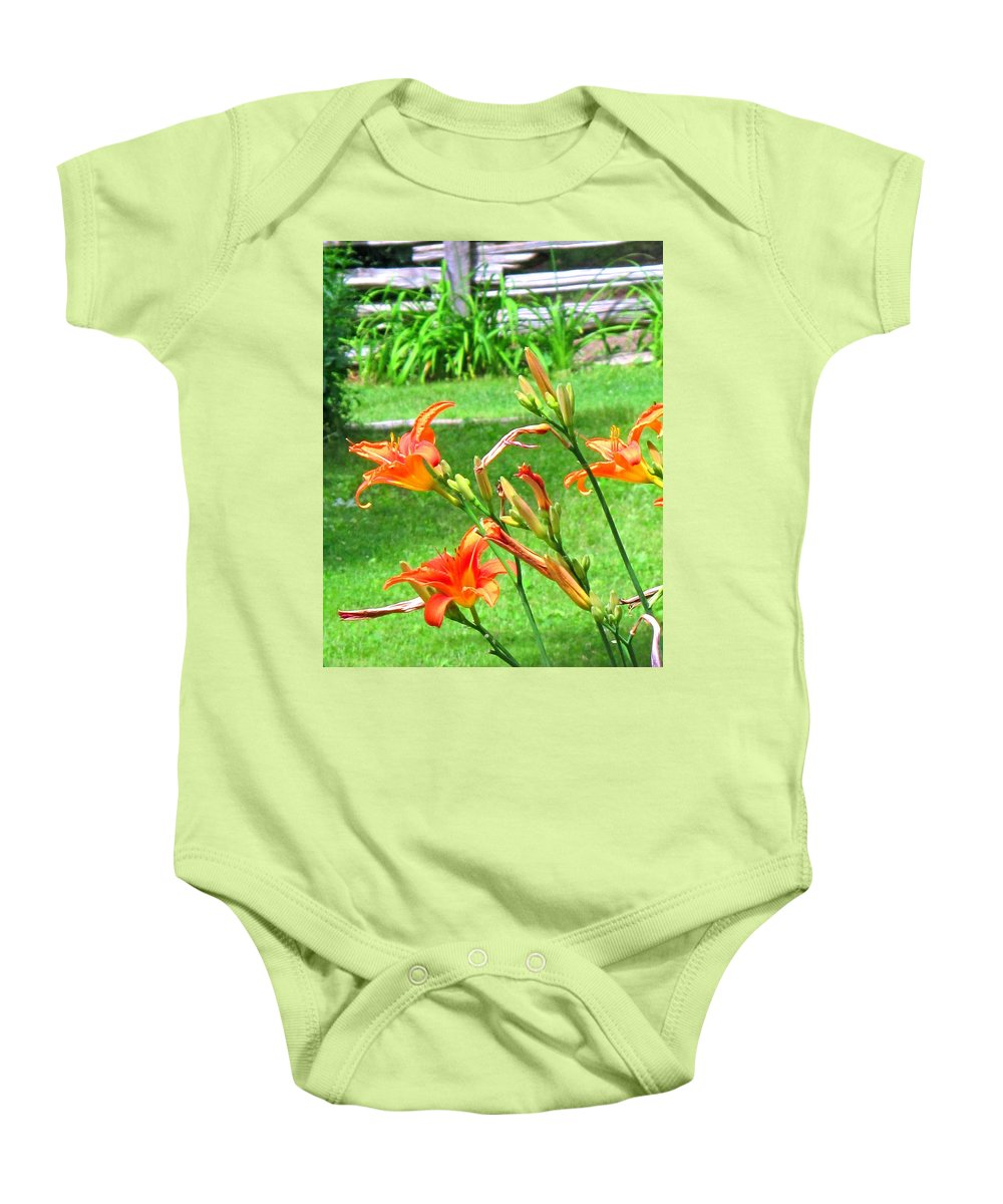 Lilly Baby Onesie featuring the photograph Orange And Green by Ian MacDonald