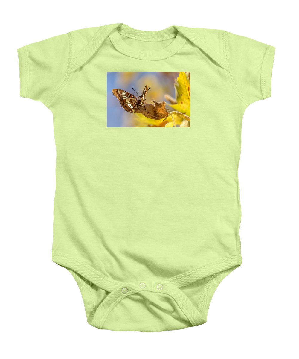 Nature Baby Onesie featuring the photograph Patience by Ian Aldridge