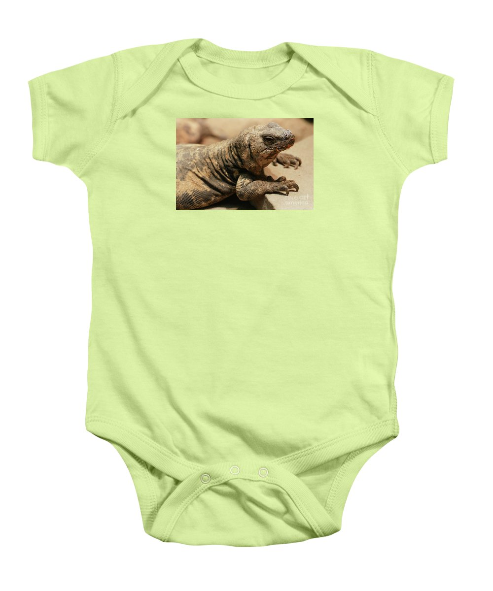 Lizard Baby Onesie featuring the photograph Portrait Day - 2 by Linda Shafer