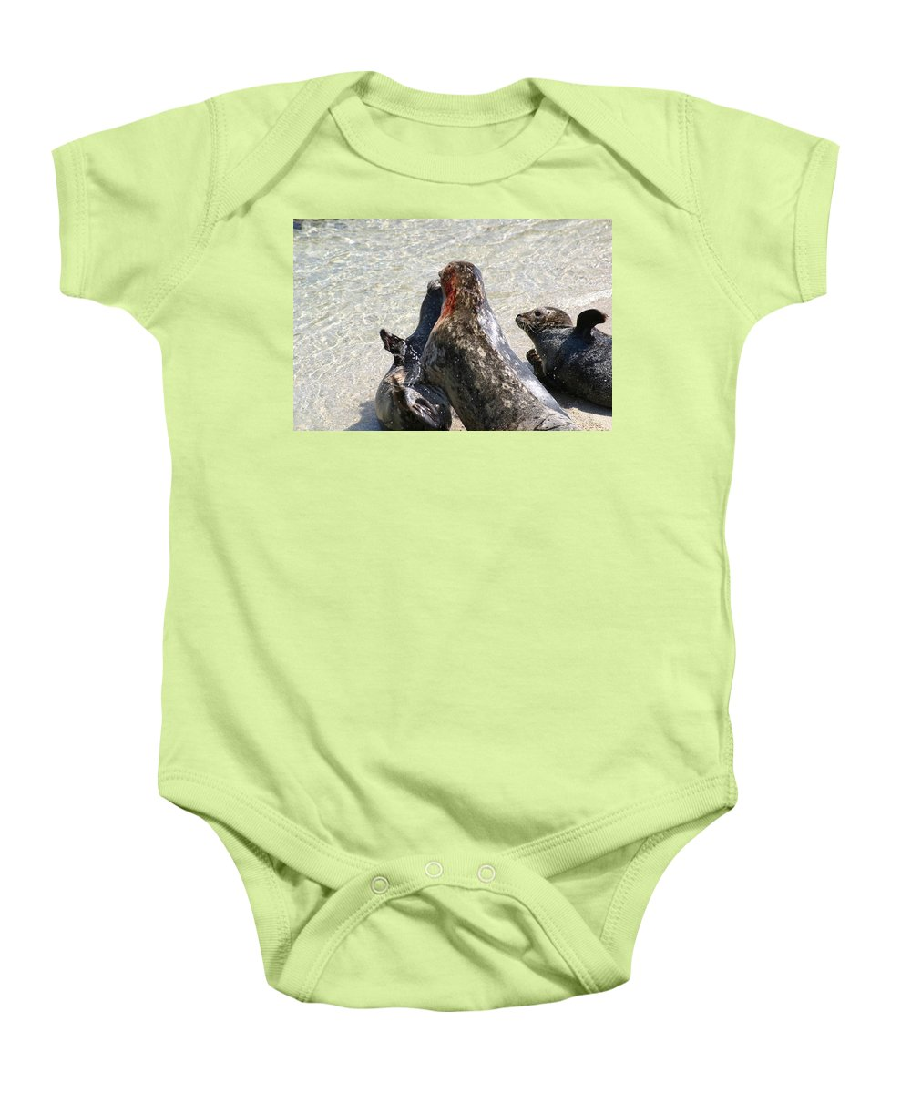 Seals Baby Onesie featuring the photograph Seal Fight by Anthony Jones