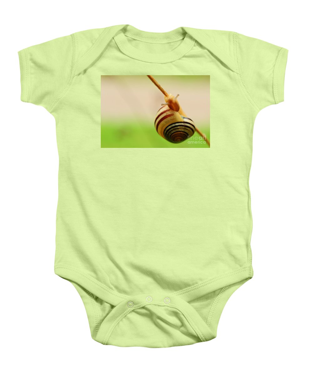 Branch Baby Onesie featuring the photograph Snail by Joe Ng