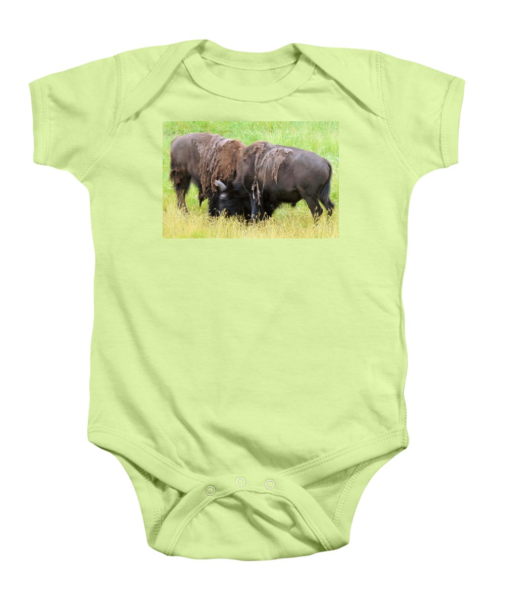 yellowstone National Park Baby Onesie featuring the photograph Sparring by Wendy Fox
