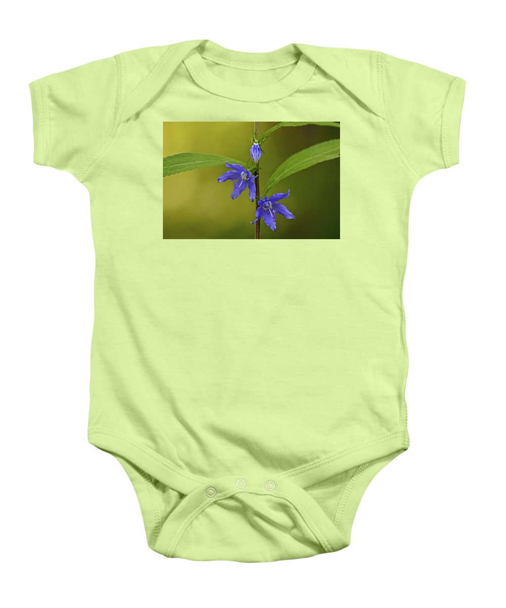 Abstract Baby Onesie featuring the photograph Tall Bellflower by Jack R Perry