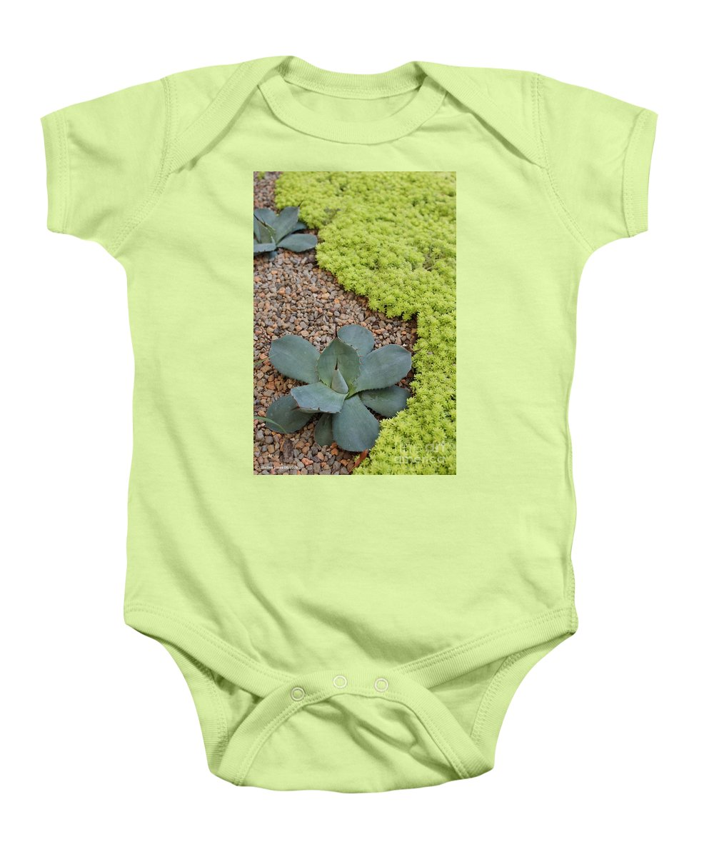 Cacti Baby Onesie featuring the photograph Texture by Shelley Jones