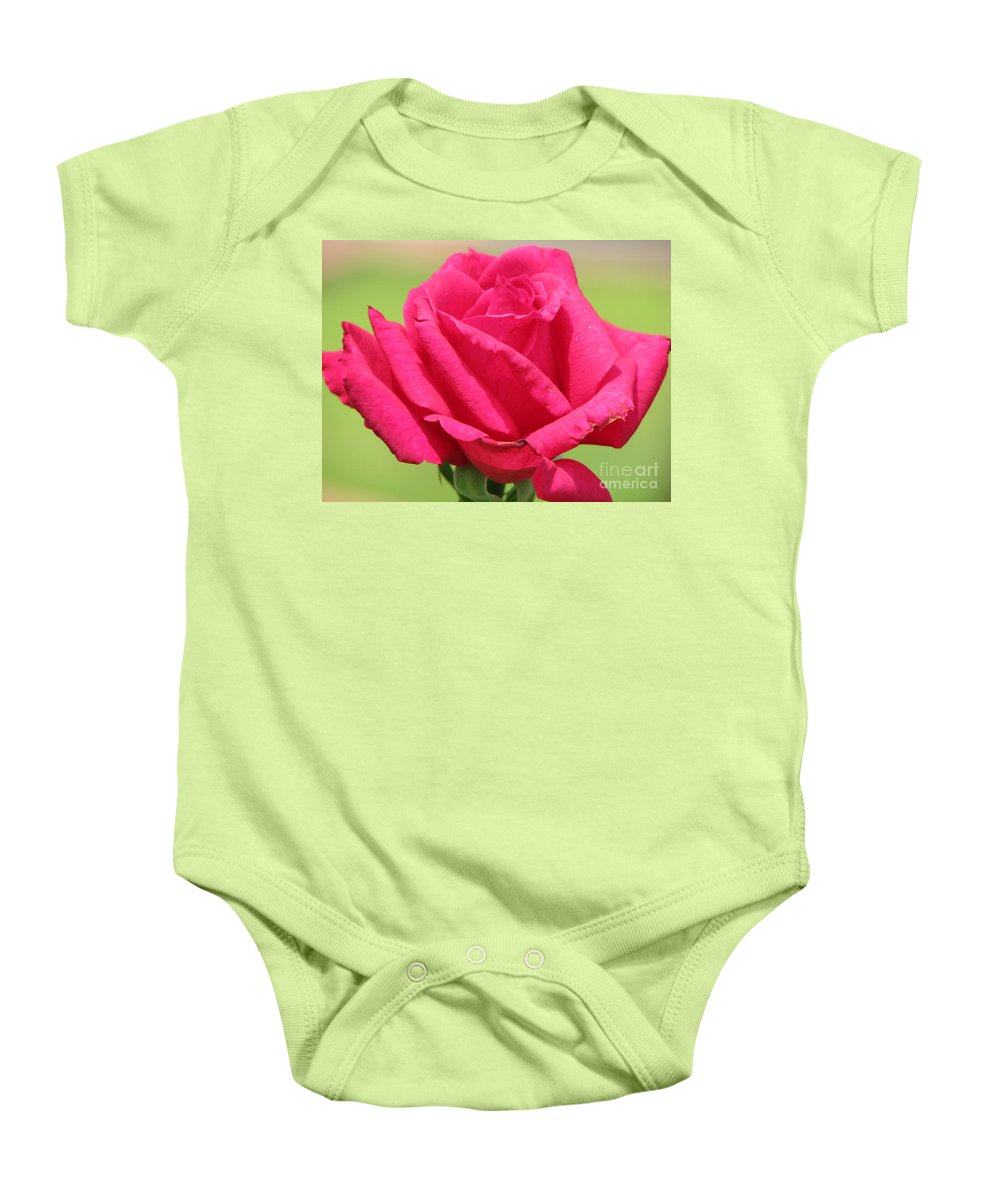 Roses Baby Onesie featuring the photograph The Rose by Amanda Barcon