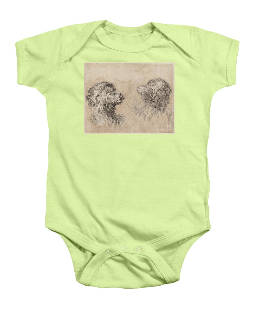 Baby Onesie featuring the drawing Two Camel Heads [recto] by Stefano Della Bella