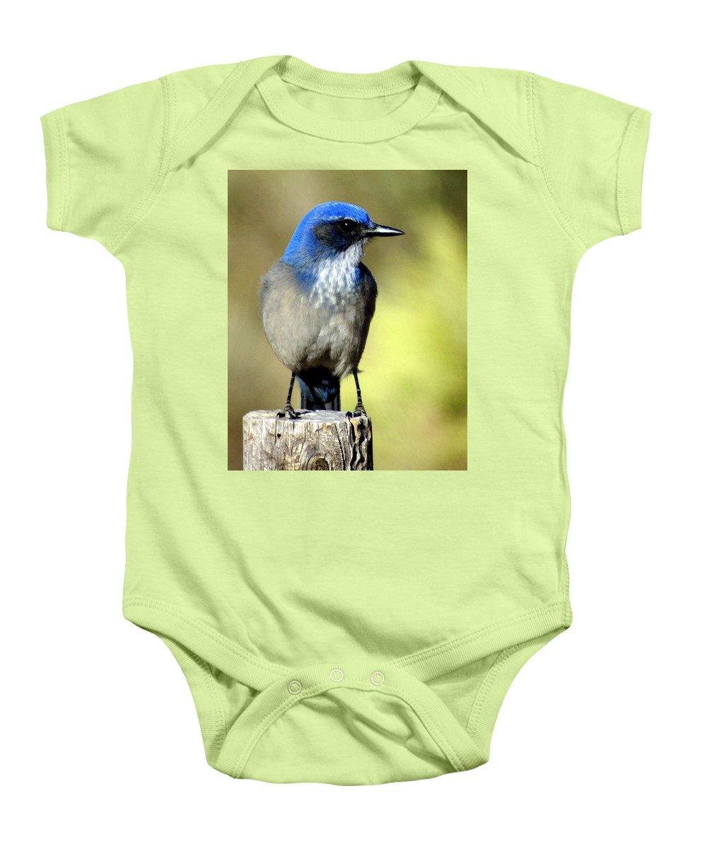 Birds Baby Onesie featuring the photograph Utah Bird by Marty Koch