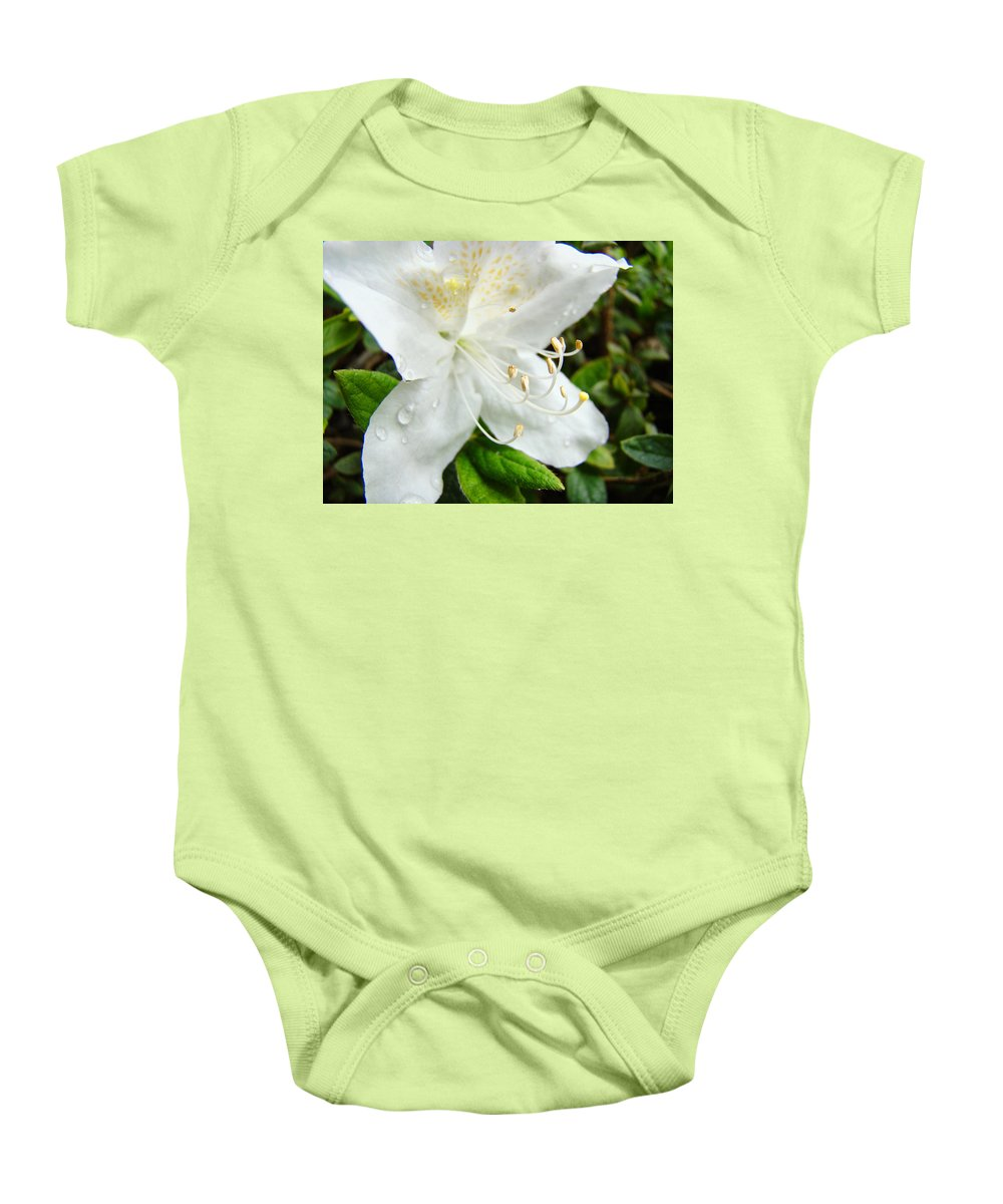 �azaleas Artwork� Baby Onesie featuring the photograph White Azalea Flower 9 Azaleas Raindrops Spring Art Prints Baslee Troutman by Baslee Troutman
