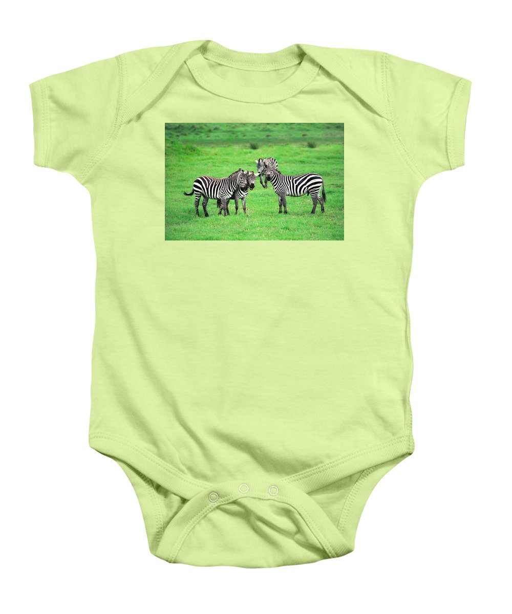 Africa Baby Onesie featuring the photograph Zebras by Sebastian Musial