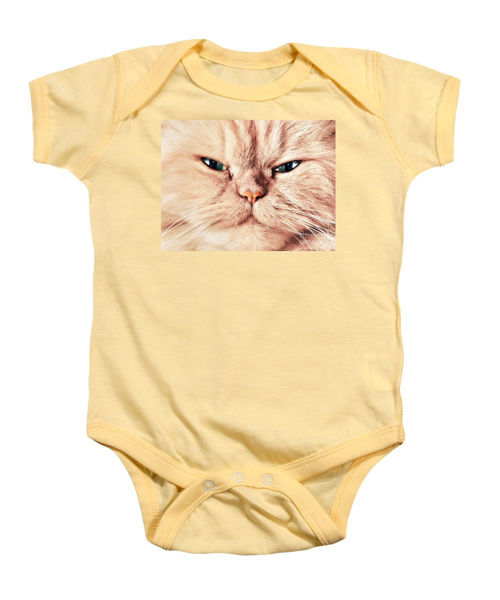 Face Baby Onesie featuring the photograph Cat Face Close Up Portrait by Michal Bednarek