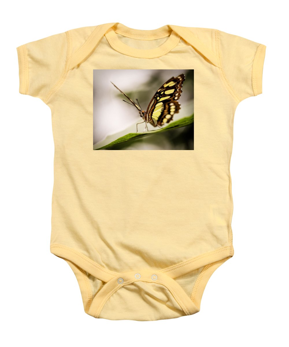 Butterfly Baby Onesie featuring the digital art Butterfly by Diane Dugas