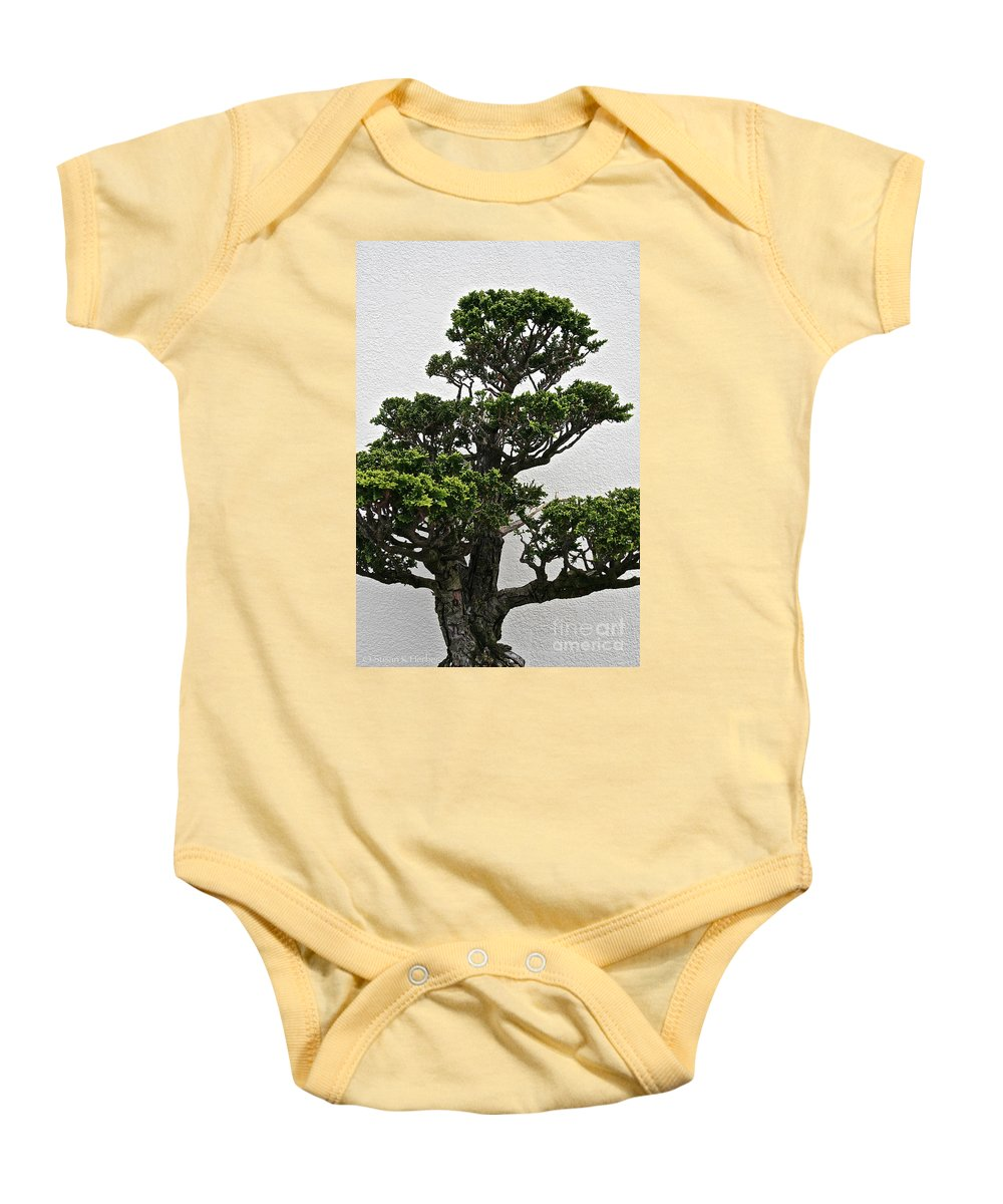 Tree Baby Onesie featuring the photograph Bonsai Pine by Susan Herber