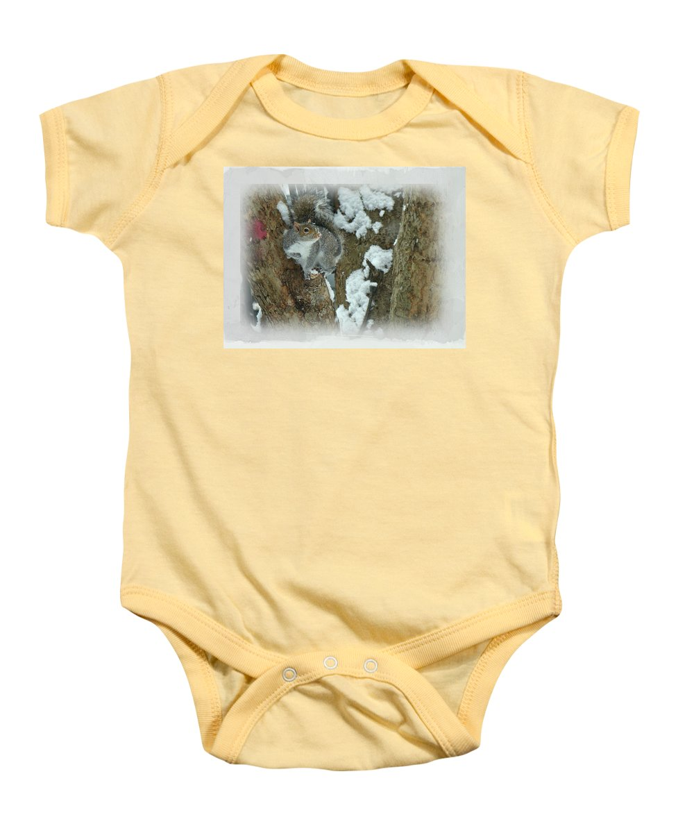 Squirrel Baby Onesie featuring the photograph Eastern Gray Squirrel - Sciurus Carolinensis by Mother Nature