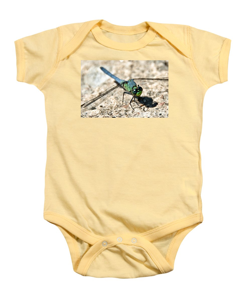 Dragonfly Baby Onesie featuring the photograph Eastern Pondhawk Side by Cheryl Baxter