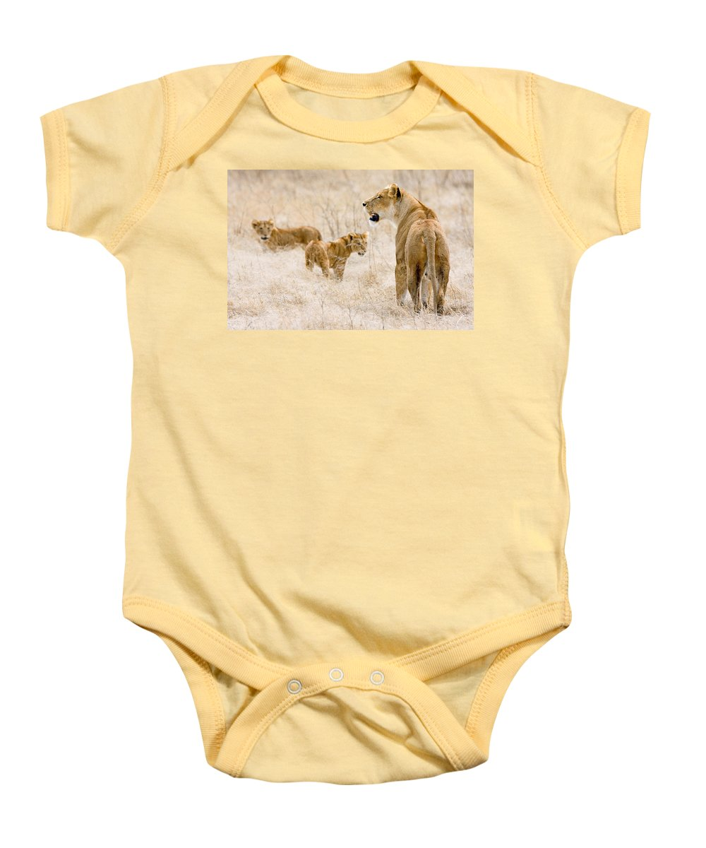Tanzania Baby Onesie featuring the photograph Lion Family by Max Waugh