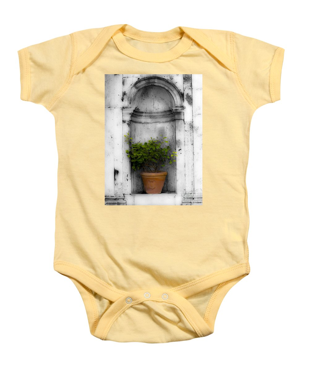 Plant Baby Onesie featuring the photograph Potted Plant At Villa D'este Near Rome Italy by Mike Nellums