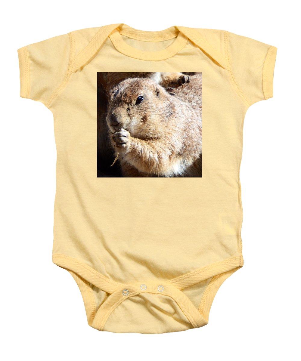 Prairie Baby Onesie featuring the photograph Prairie Dog by David G Paul