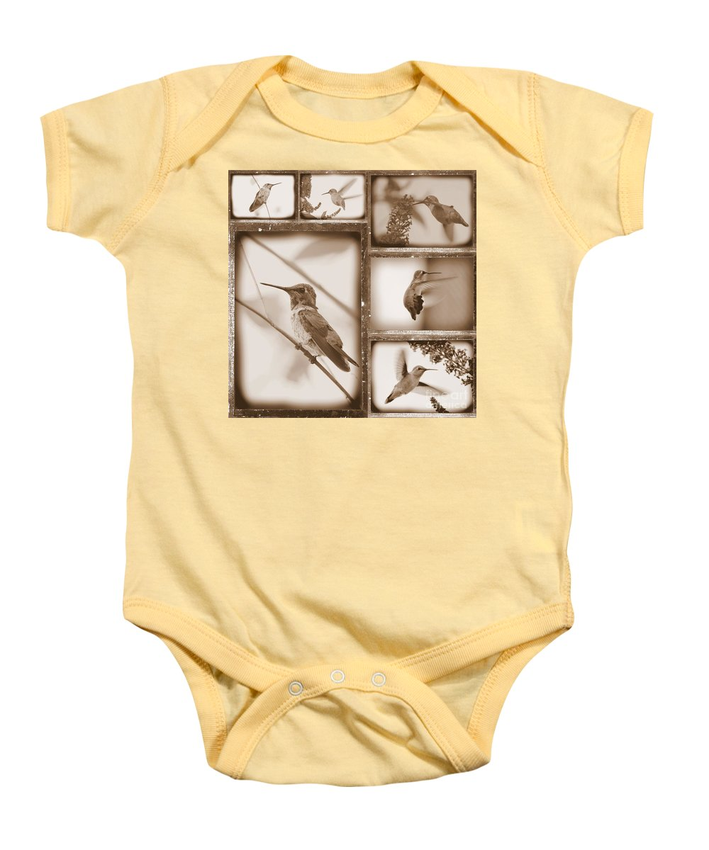 Hummingbird Baby Onesie featuring the photograph Sepia Hummingbird Collage by Carol Groenen
