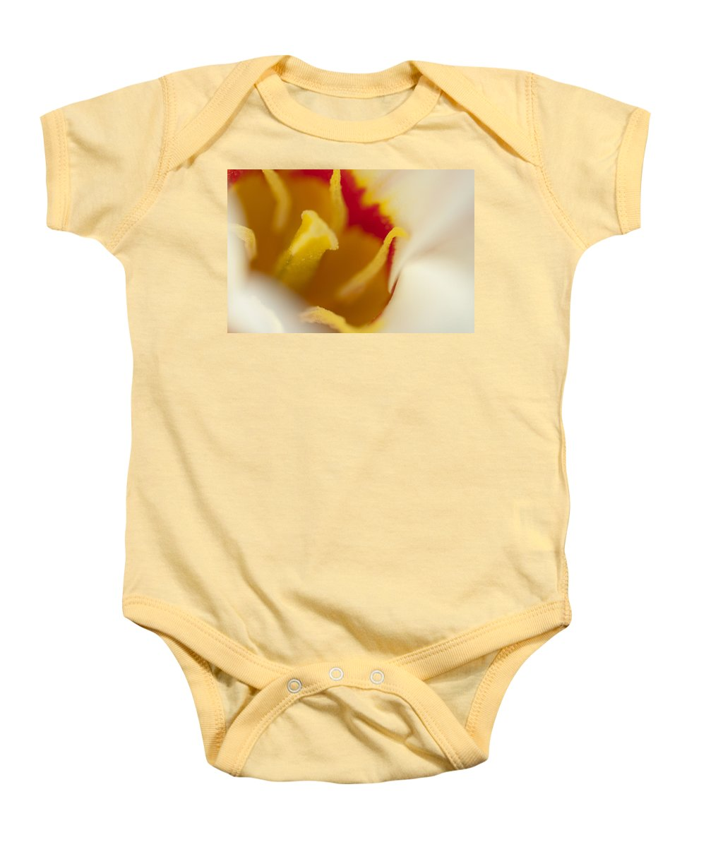 Tulip Baby Onesie featuring the photograph Tulip Close Up 1 by Steve Purnell