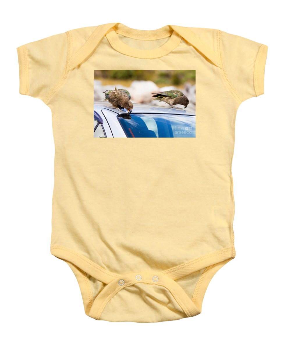 South Island Baby Onesie featuring the photograph Two Nz Alpine Parrot Kea Trying To Vandalize A Car by Stephan Pietzko
