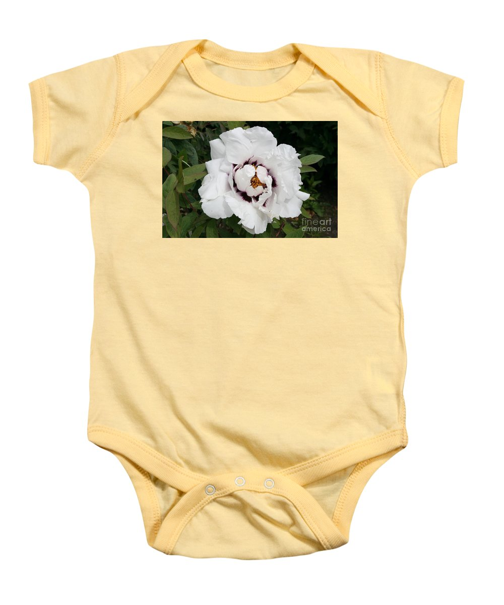 Flowers Baby Onesie featuring the photograph White Peony by Christiane Schulze Art And Photography