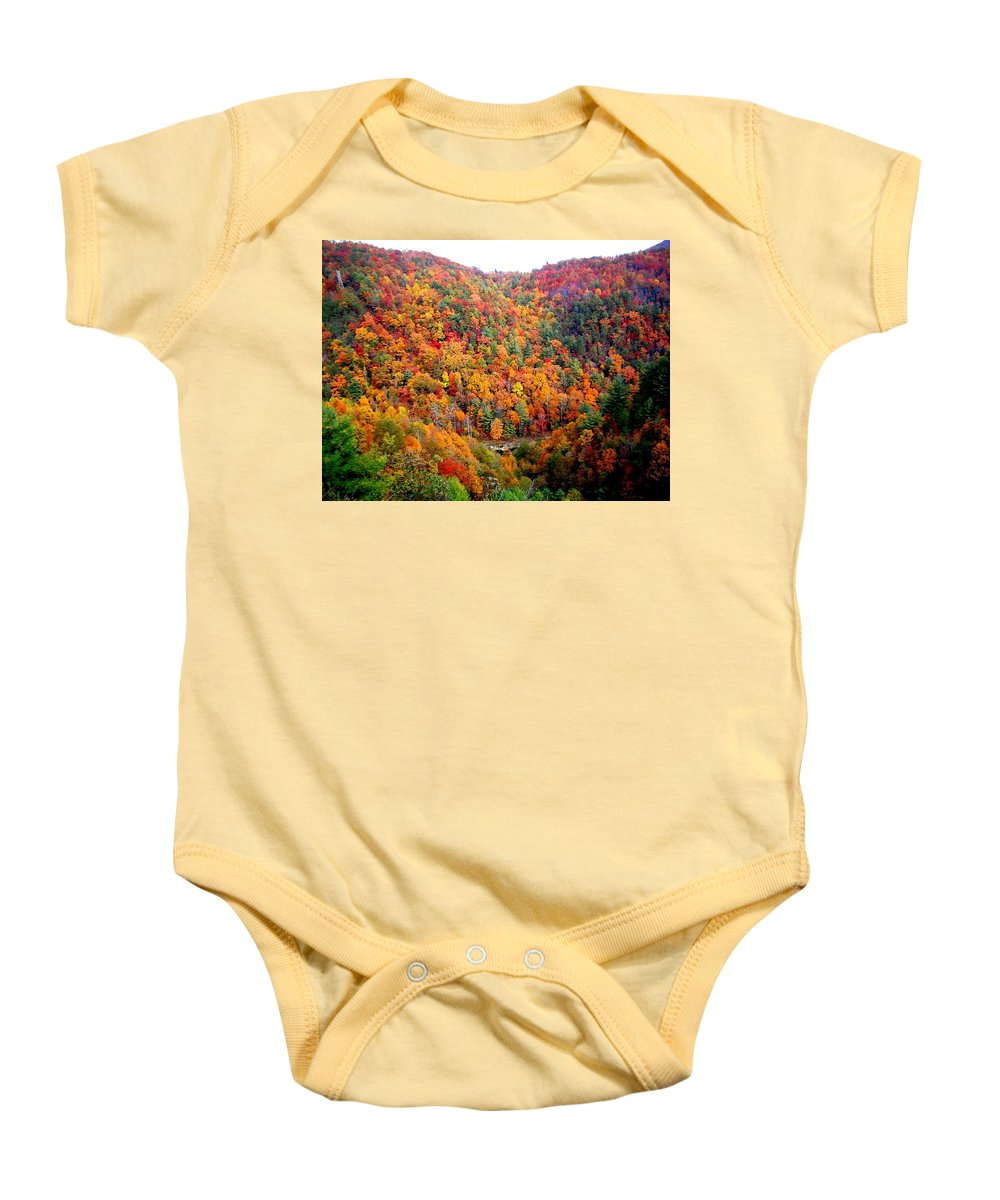 Vacation Baby Onesie featuring the photograph Brilliant Color Trees by April Patterson