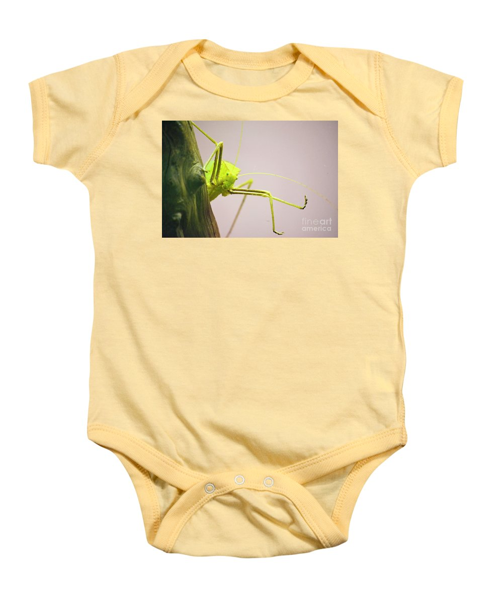 Bug Zoo Baby Onesie featuring the photograph Handsome Boy by Traci Cottingham