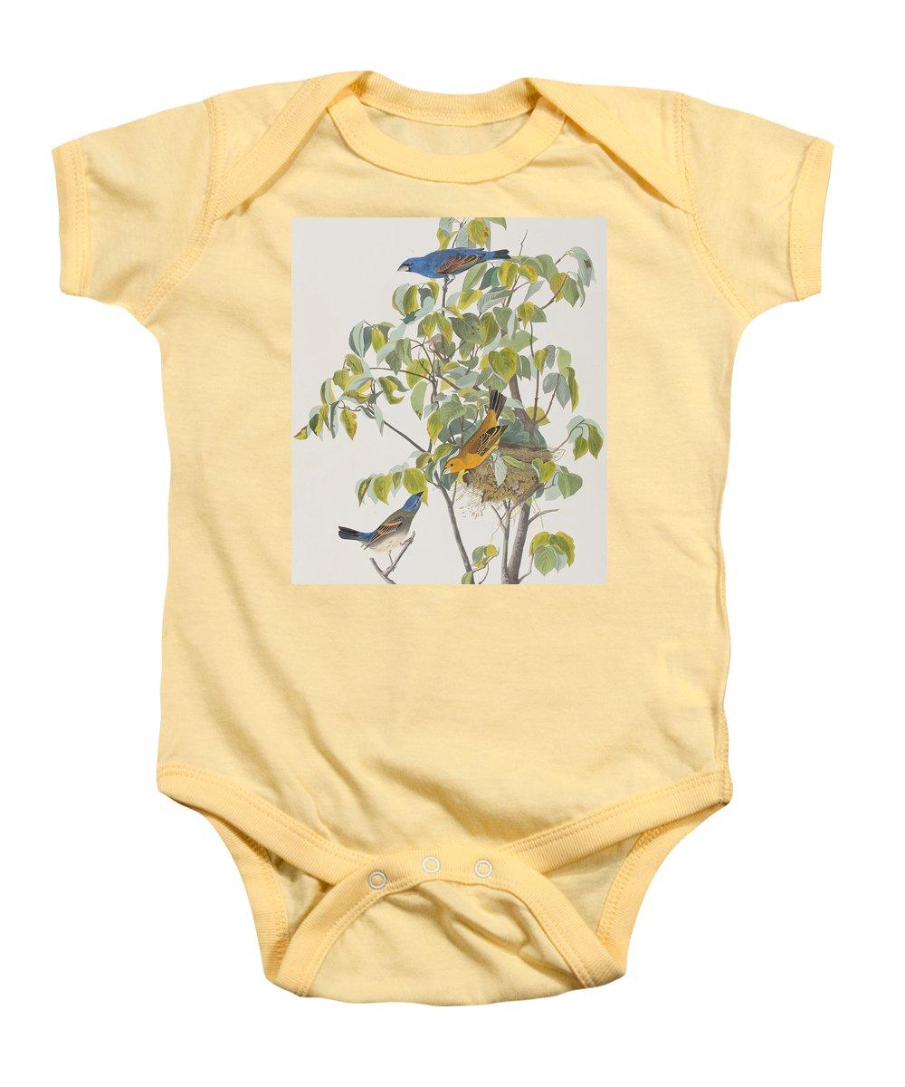 Grosbeak Baby Onesie featuring the painting Blue Grosbeak by John James Audubon