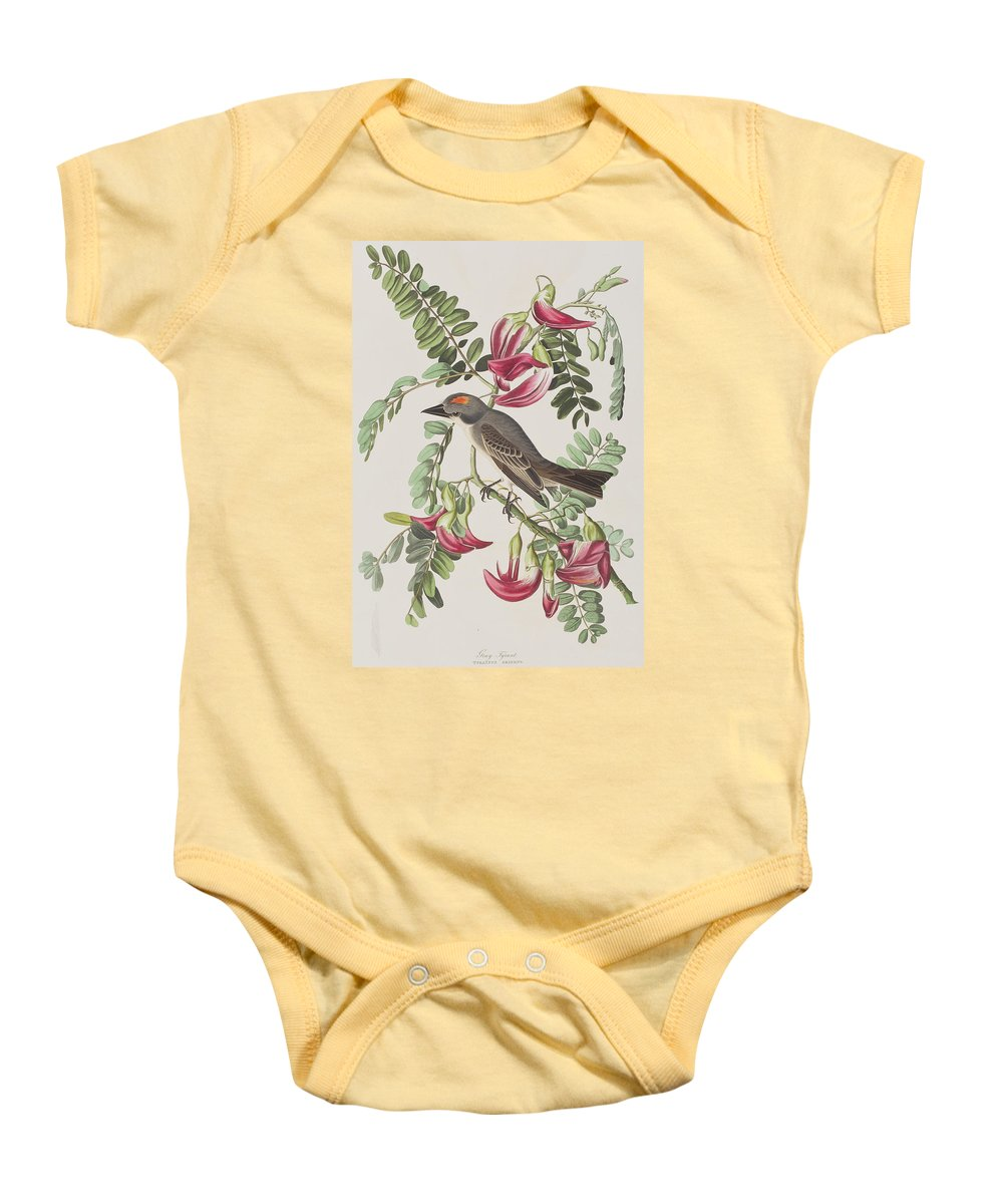 Plate 170 Baby Onesie featuring the painting Gray Tyrant by John James Audubon