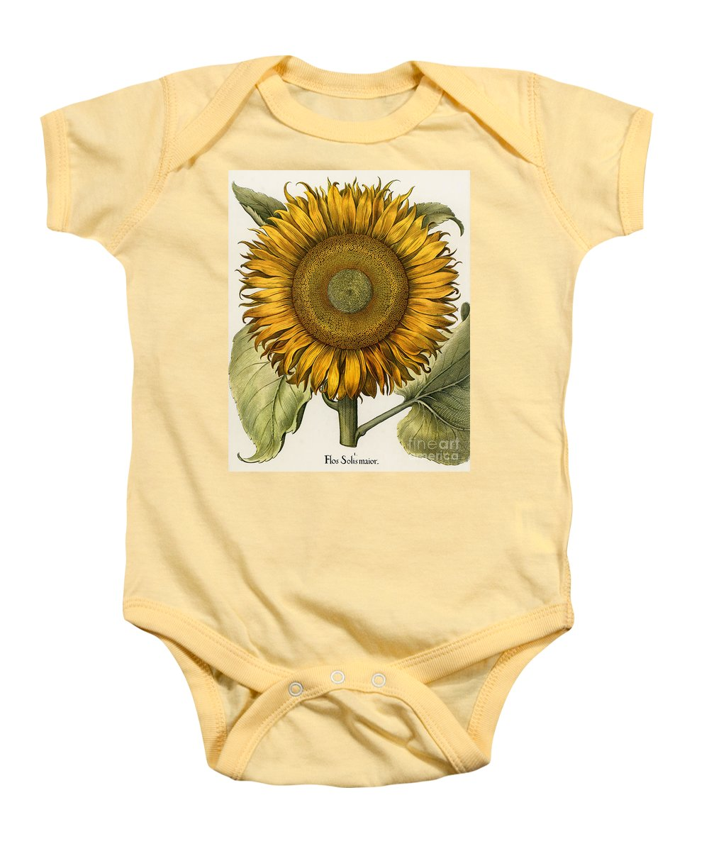 1613 Baby Onesie featuring the photograph Sunflower by Granger