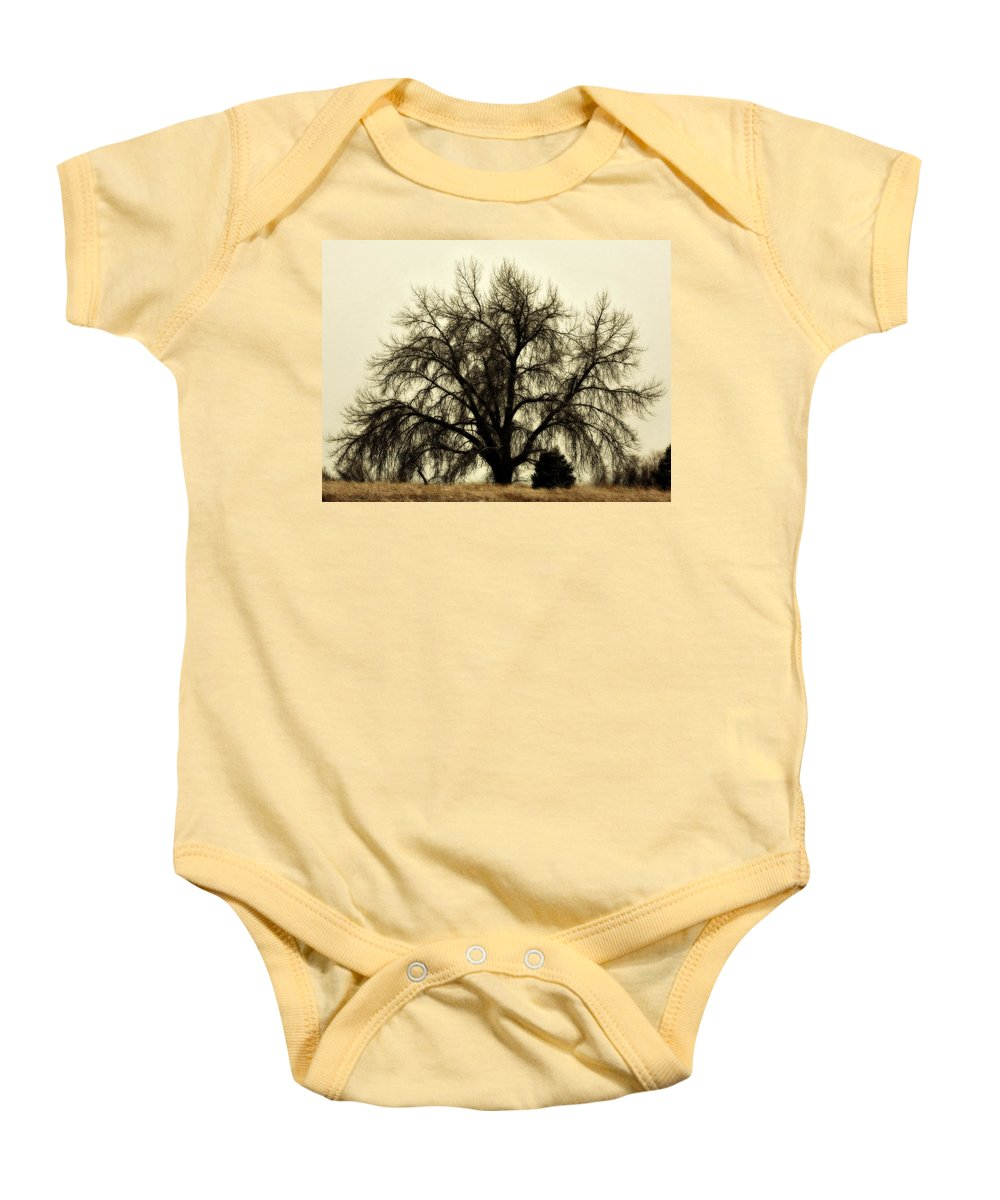Tree Baby Onesie featuring the photograph A Winter's Day by Marilyn Hunt